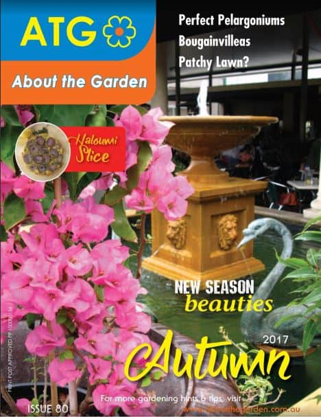 Catalogues Rural Farm Garden Supplies Brisbane Gleam ODawn