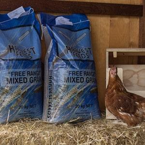 Harvest feeds - Rural Store Supplies - Gleam O' Dawn Rural Store