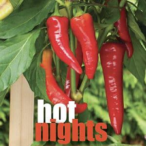 hot chillis