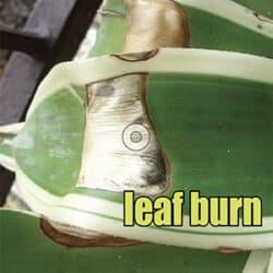 leaf burn