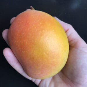 Delicious Mangoes