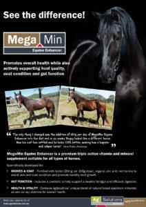 Megamin poster - Horse Supplies Brisbane - Gleam O' Dawn Rural Store