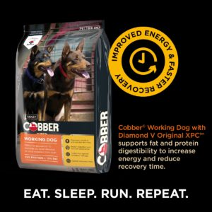 Cobber working dog $47.00