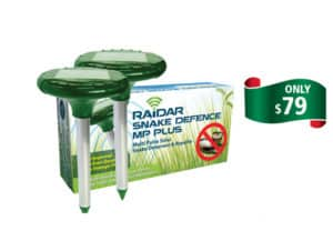 Raidar MP Plus - Rural Store Supplies - Gleam O' Dawn Rural Store