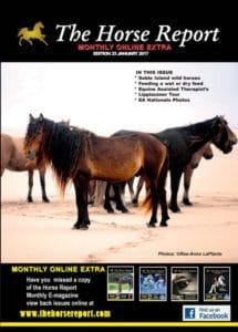The Horse Report January 2017 - Horse Supplies Brisbane - Gleam O' Dawn Rural Store