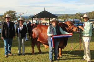 Samford Show - Horse Supplies Brisbane - Gleam O' Dawn Rural Store