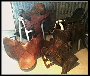 second hand saddle - Horse Supplies Brisbane - Gleam O' Dawn Rural Store