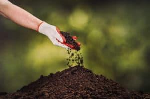 Fertiliser - Garden Supplies Brisbane - Gleam O' Dawn Rural Store