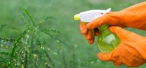 Garden spray - Rural Store Supplies - Gleam O' Dawn Rural Store