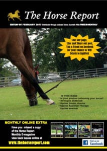 The Horse Report February 2017 - Garden Supplies Brisbane - Gleam O' Dawn Rural Store
