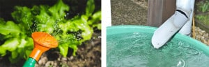 Water supply - Rural Store Supplies - Gleam O' Dawn Rural Store