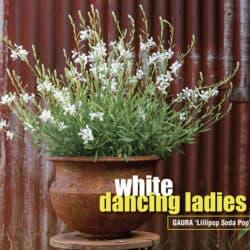 White dancing ladies